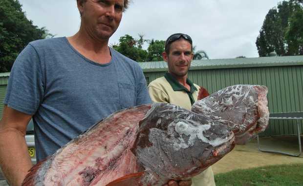 Chinderah fisherman John Brinsmead with researcher Toby Piddocke.