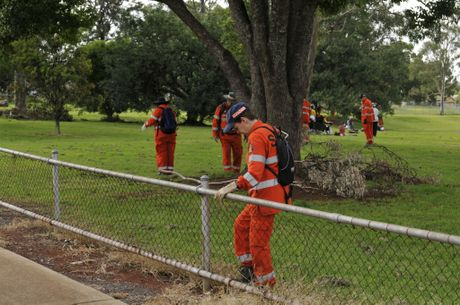 SES volunteer Linda Macnish leaves no stone un-turned as she searches the boundary of Martin Klein Park on Jellicoe St.