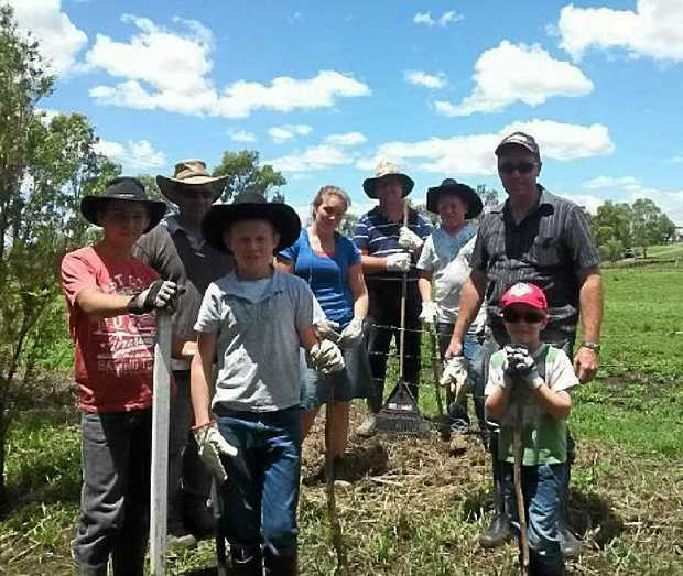TOUGH WORK: Volunteers helped clean grass and debris from fencing last weekend after floodwater surged through the region on the Australia Day long weekend.