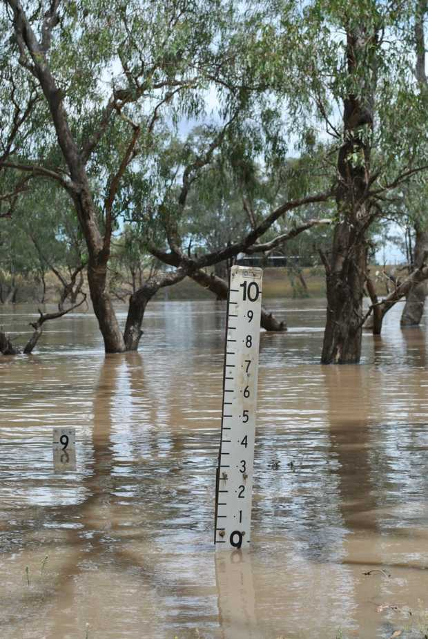 MAKING A MARK: The Balonne River was flowing at about nine metres downstream from Jack Taylor Weir on Monday morning. - Photo Lyndon Keane / Balonne Beacon