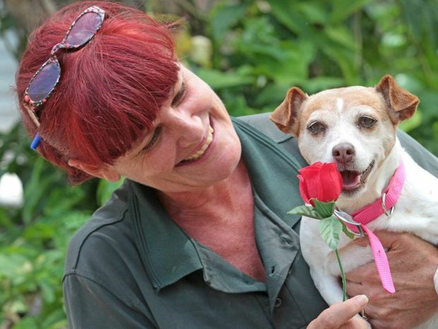 Melissa McGarvey of Sunshine Coast Animal Refuge is hoping Lizzie finds a lifetime valentine.
