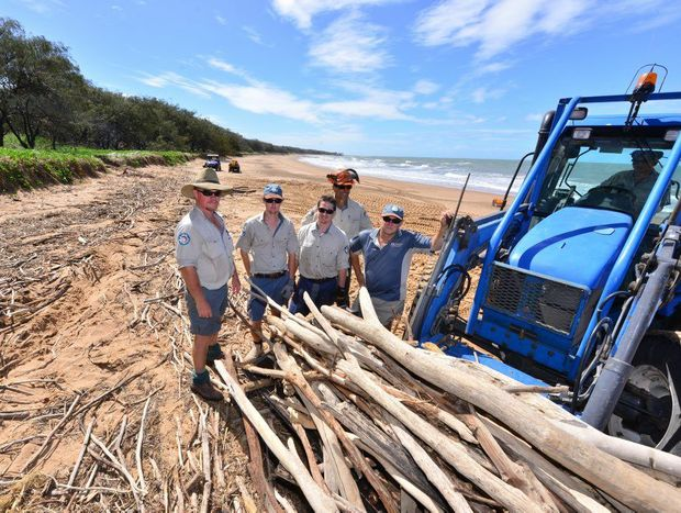 Thanks to the hard work of rangers Bruce Thompson, Shane O'Connor, John Sergee, Joe Harris and Paul Horton, Mon Repos turtle tours will be up and running again on Monday.