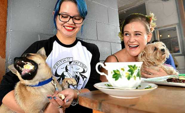 Evelyn Chin, with Rosie, and Claire de Lune, with Pawpaw, test out the new Dogue Menu at Mooloolaba cafe The Velo Project.