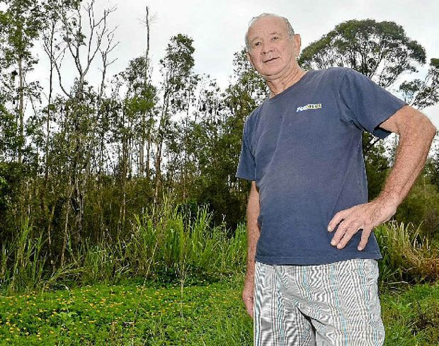 David Hardie has concerns for student health with a large bat colony living near Stella Maris Catholic School.