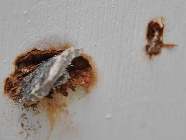 Asbestos that lodged itself in Mr Wusts trimming during the storms.