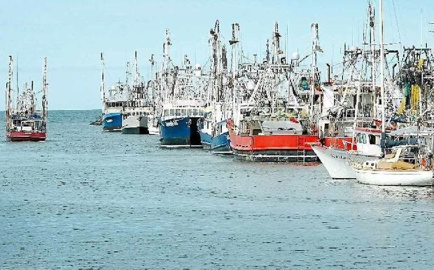 TIME OUT: Hervey Bay's fishing trawler fleet have also been affected by the floods.