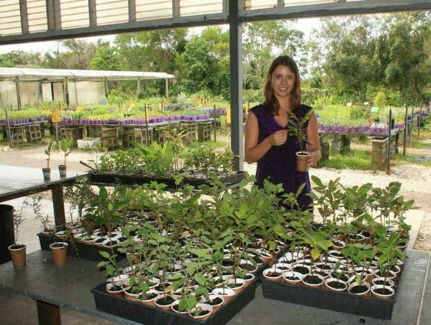 Sofie Bakker at the Herb Nursery.