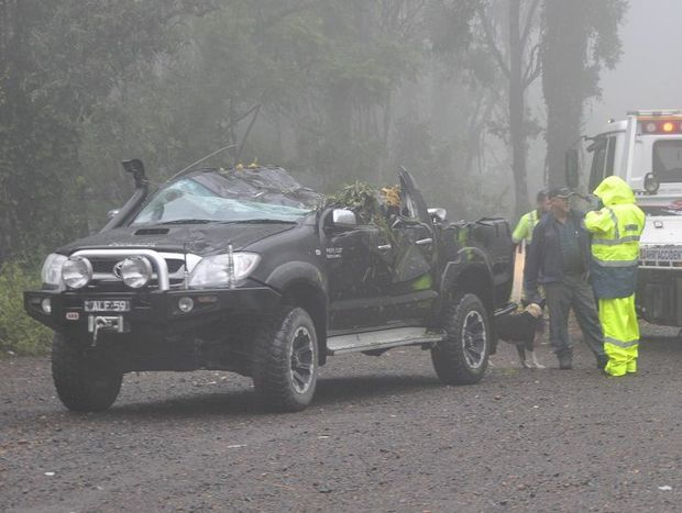 A 4WD driver was shaken but uninjured after a tree fell on his vehicle on the Toowoomba Range
