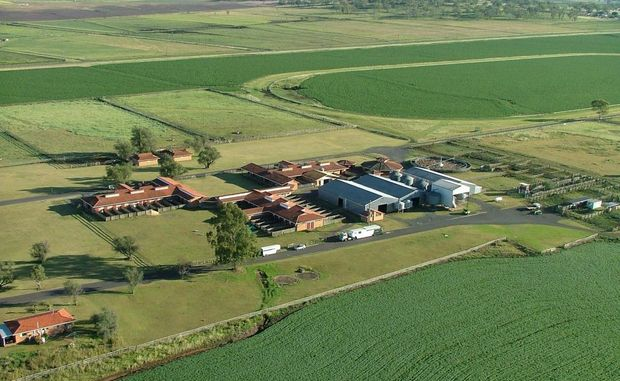 An aerial photo of the Wellcamp Downs stud, to be sold off and demolished by Wagners in March to make way for the new Wellcamp Airport runway.