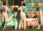 Tassie Tigers snatch Sheffield Shield from Qld Bulls
