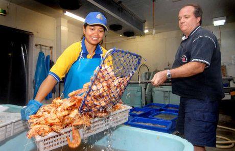 GOOD HAUL: Mackay Reef Fish Supplies owne