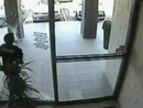 CCTV catches alleged thief smash through glass