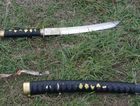 An implement similar to this was allegedly involved in injuries suffered by two police officers at Eungai Creek yesterday.