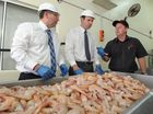 A WARNING issued to a Urangan seafood processor for scallop disposal into the ocean is  writing on the wall, says State Member for Hervey Bay Ted Sorensen.