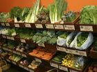 Most hated vegetables may help reduce asthma symptoms