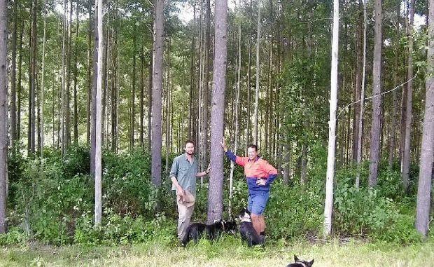 tall timbers personals Tall timbers marina 18521 herring creek road box 9 tall timbers, md 20690 info@talltimbersmarinasomdcom phone: 301-994-1508 fax: 301-994-2613.