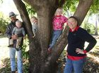 Brendan, Nate, Brody, Isleigh and Shontae Moran of Double D Station, Clermont. Photo Kathleen Calderwood / Rural Weekly