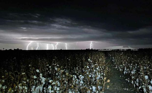 Last night's storm rolls over cotton fields at Brookstead, near Millmerran.