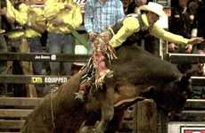 Ben Seeds is hangs onto Walking Tall during the open bull ride, in the inaugural Great Western Cup.
