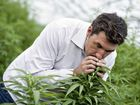 HEMP Embassy president Michael Balderstone hopes a symposium chaired by Premier Mike Baird today will produce more than a clinical trial on medical marijuana.