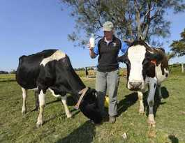Local Farm Fresh buys out Big River Milk; could be more jobs
