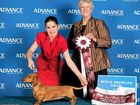 Eleven-year-old Benaraby girl Eryn Finlay came second overall at the Dog Handling State Finals at this year's Ekka.