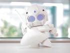 DIY Raspberry Pi: RAPIRO humanoid robot