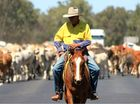 STEVE Fraser has been on the stock routes for longer than he'd care to admit, moving cattle and living through what he said was the worst drought he had seen.
