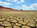 ALMOST two thirds of Queensland's farmers have told their industry group the drought gripping the state is the worst in living memory.