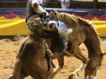Emerald Rodeo on October 4
