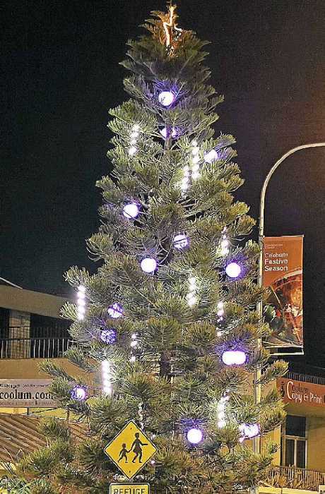 lights and movie make for family fun coolum north
