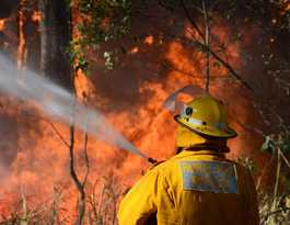 Firefighters monitoring vegetation fire in Berserker