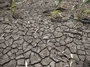 AGFORCE Queensland has warned some farmers devastated by drought might not be able to take advantage of tax breaks the Federal government has brought forward.