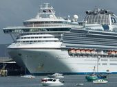 THE first of six cruise ships visiting Gladstone next year is expected on March 19.