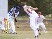 BROTHERS will meet Laidley in the 2014 Division One Ipswich and West Moreton Cricket Association final beginning Saturday.