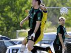 TRAILING 2-0, the new-look Ipswich Knights could have conceded defeat. However, they nearly won the away Brisbane Premier League match.