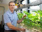 Crop diversity drives Bundaberg region
