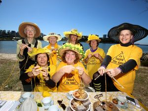 The Kitting Nannas latest venture, a music video, will be launched at a Bentley re-union at the Lismore Workers Club.