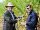 RENEWED confidence in the Maryborough region's sugar industry has come in the form of $30m investment from Queensland's third-largest sugar producer.
