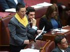 Lambie's burqa ban call creates stir on social media