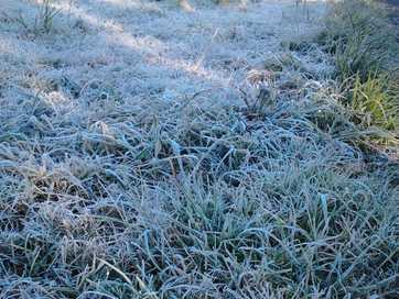 It's been a frosty morning throughout the Northern Rivers.