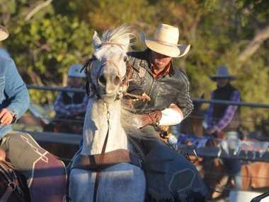 Rick Knudsen reined in the bucking horses once their passengers sent sky-high. Photo Alasdair Young / Chinchilla News