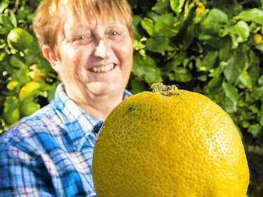 Nancy Janson with her huge lemon.