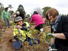 NEWTOWN Park was the place to be as rose enthusiasts gathered bright andearly this morning to enjoy a morning of pruning and learning about roses.