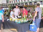 Ipswich Plant Expo