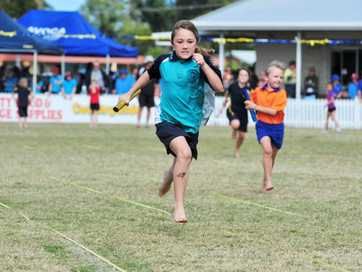 A selection of photos taken at Bundaberg Primary School Sports Day held at Salter Oval.
