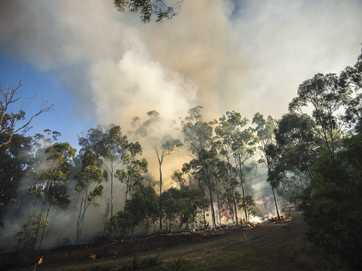 A fire that has been burning in the Beecher State Forest since Thursday threatened homes on Tuesday.