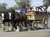 TO HELP plan the next seven days, here are 18 events happening across the Toowoomba region.