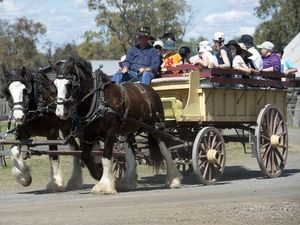 10 things to do this weekend in Toowoomba