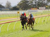 MASTER Toowoomba two-year-old trainer Darryl Gollan has struck the first blow of the new Clifford Park juvenile racing season.